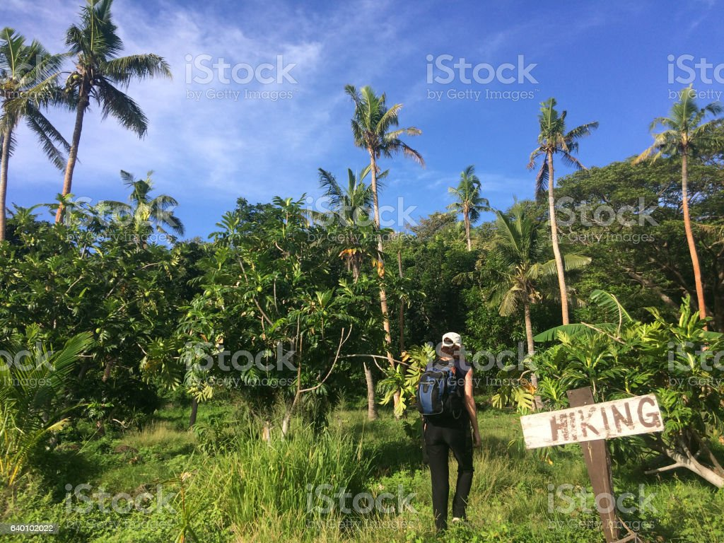Young woman travels and hikes in tropical terrain stock photo
