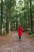 Young woman walking alone on a forest dirt path