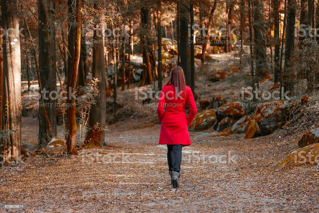 Young woman walking away alone on a forest path stock photo