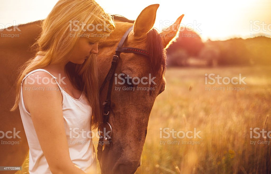Young woman with a horse in nature stock photo