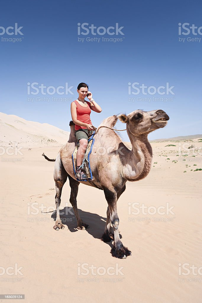 Young woman with a mobile phone on the camel royalty-free stock photo