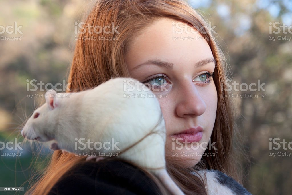Young woman with a rat stock photo