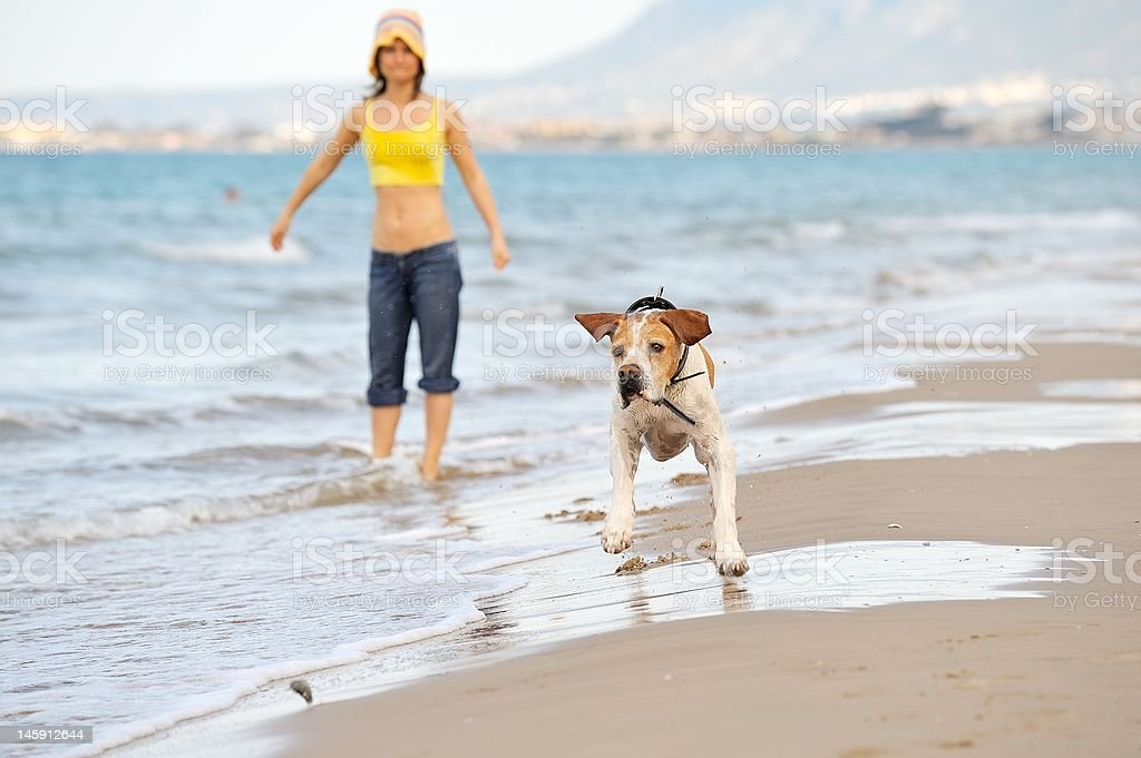 young woman with her dog on the beach royalty-free stock photo