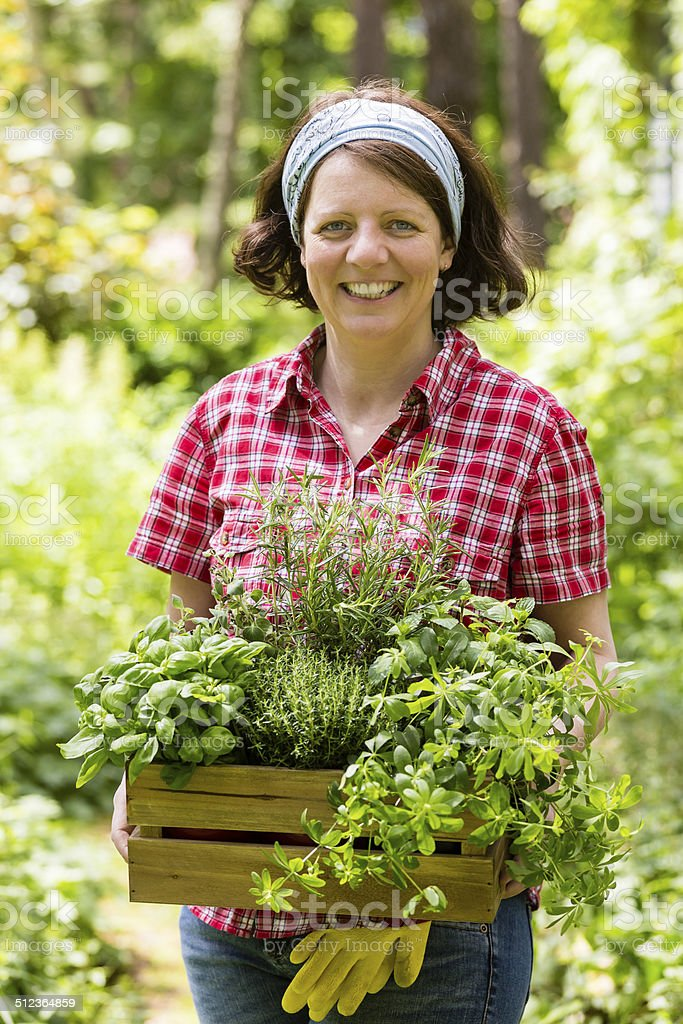 young woman with herbs in a stock photo