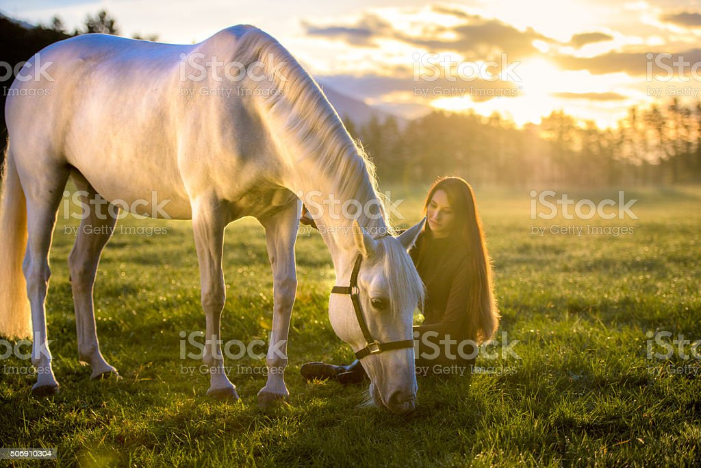 Young woman with horse stock photo