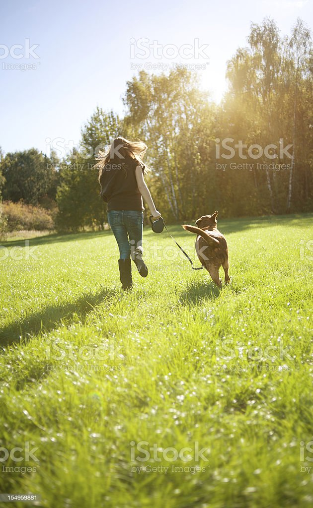 Young woman with labrador stock photo
