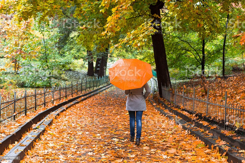 Young woman with umbrella in beautiful autumn park. stock photo