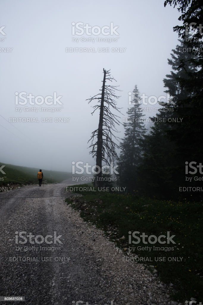 Young woman with yellow backpack in dense fog stock photo