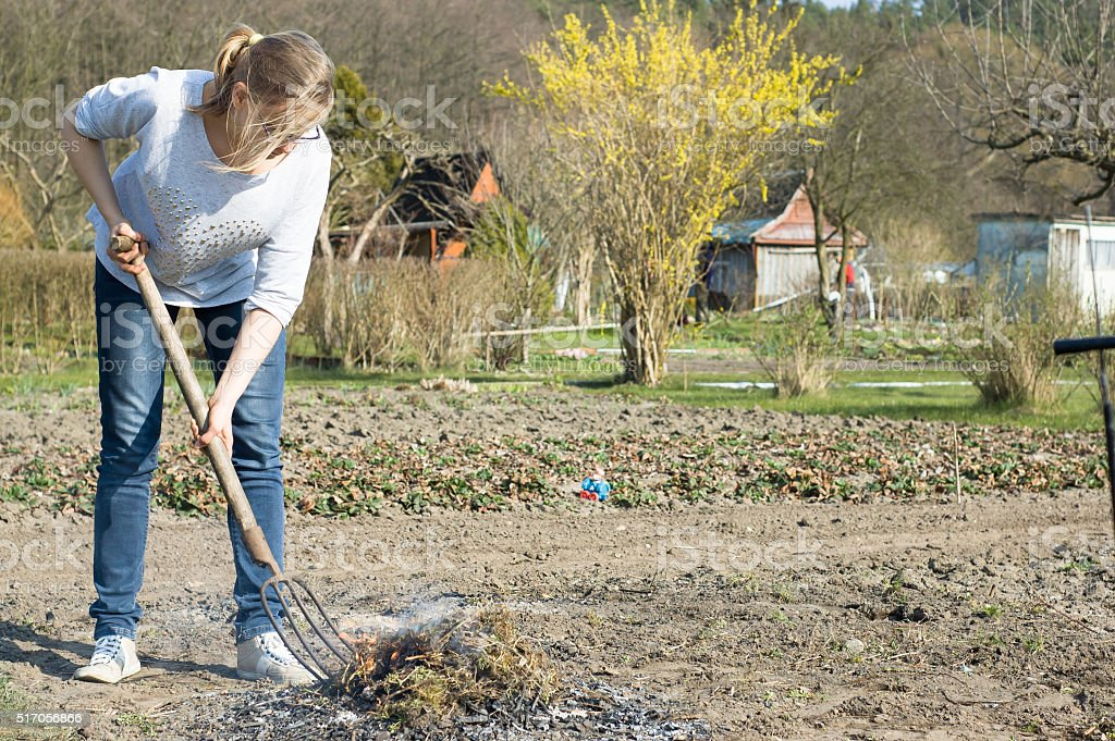 Young woman working in the garden, spring cleaning, burning grass stock photo