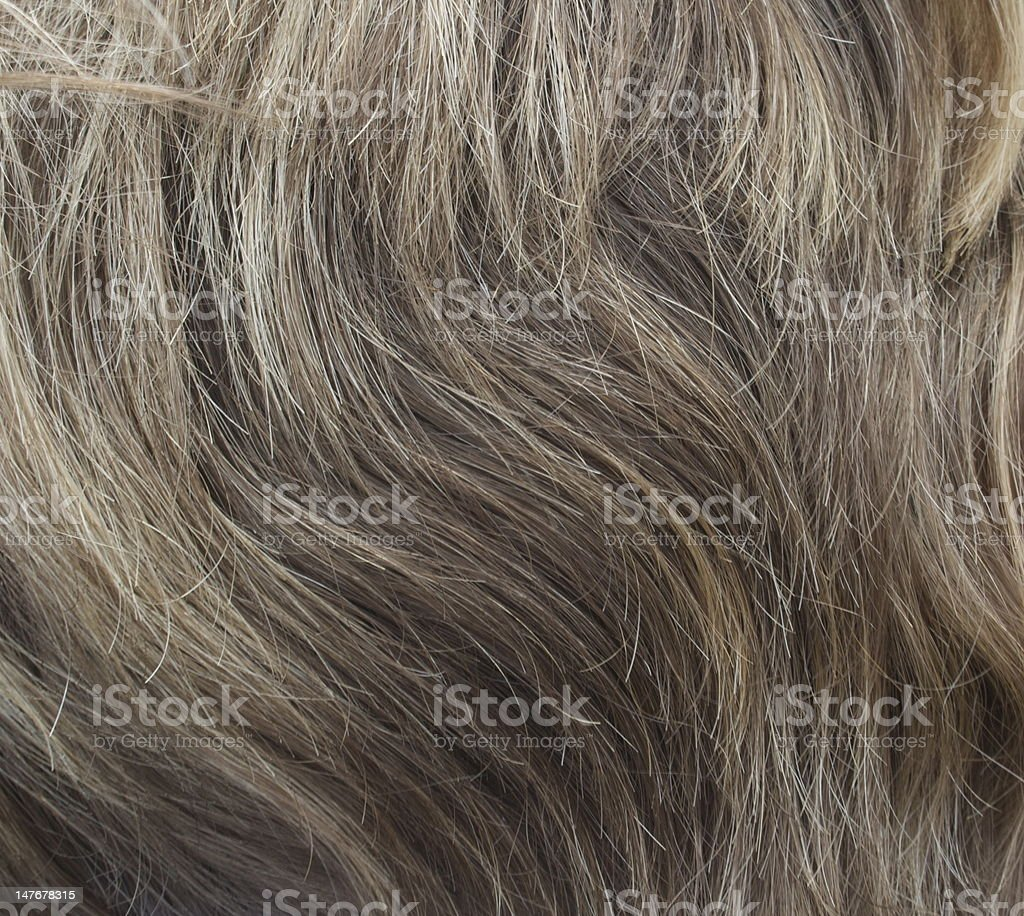 Young Woman's Hair stock photo
