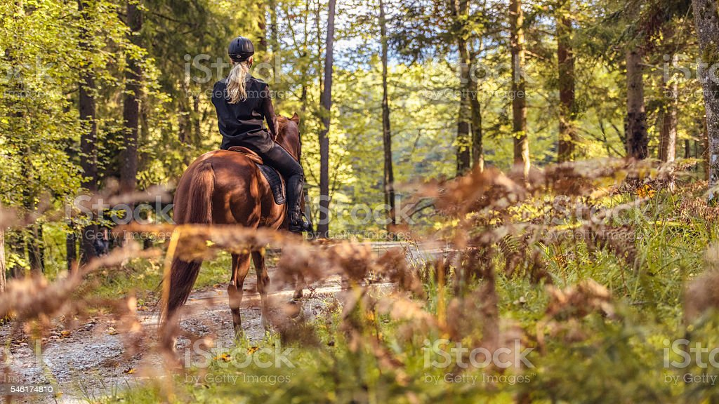 Young women enjoying horseback riding in nature stock photo