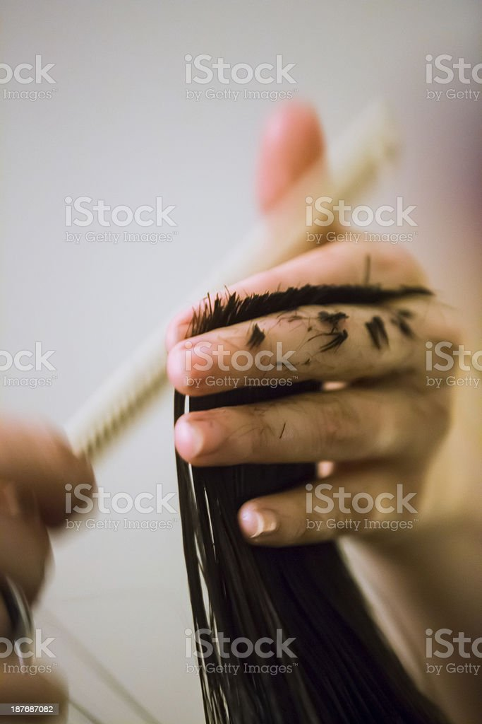 Young Women Hair Cut royalty-free stock photo