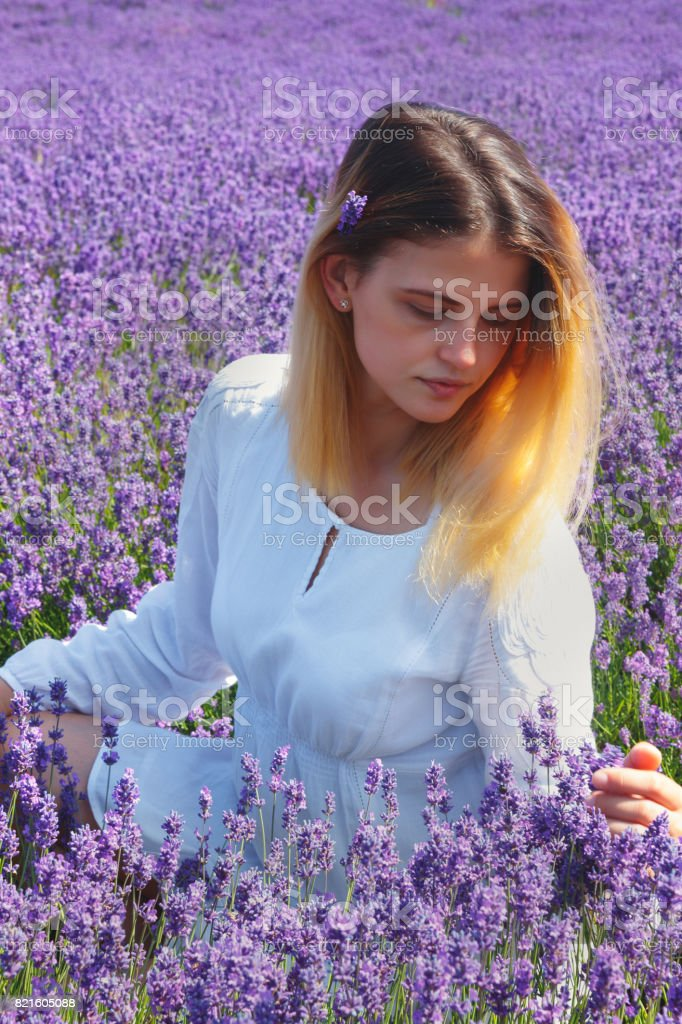 Young women in the lavender field. stock photo