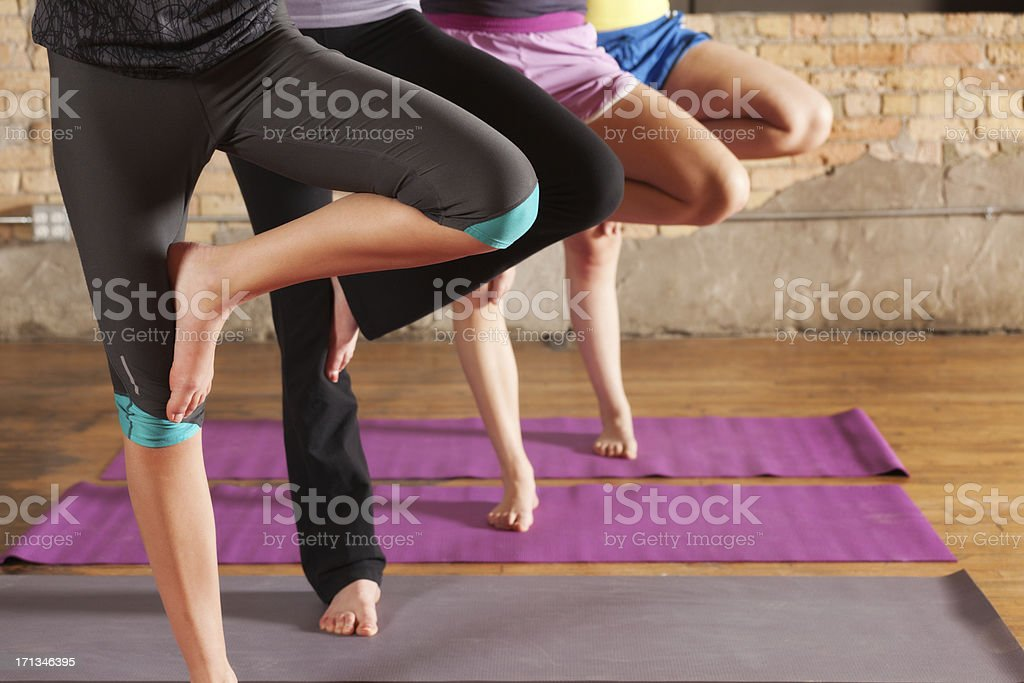 Young Women Practicing Tree Pose in Group Workout Yoga Class royalty-free stock photo