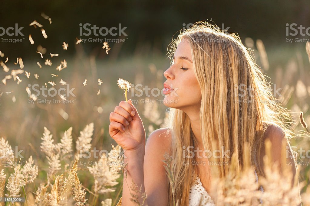 Young women with dandelion seeds in a field stock photo