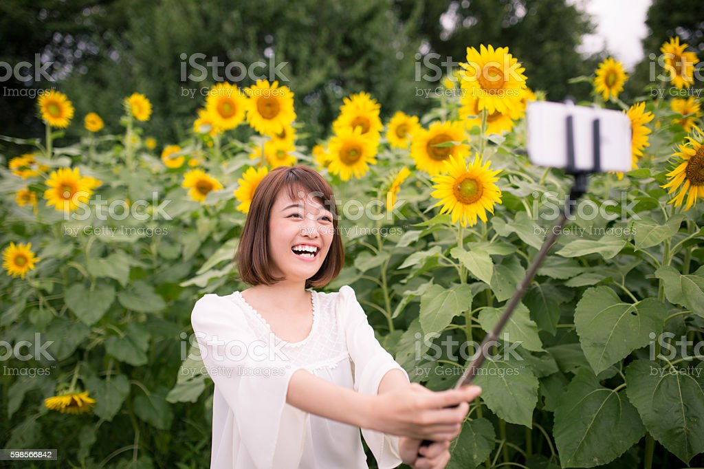 Younge woman taking selfie picture in sunflower field stock photo