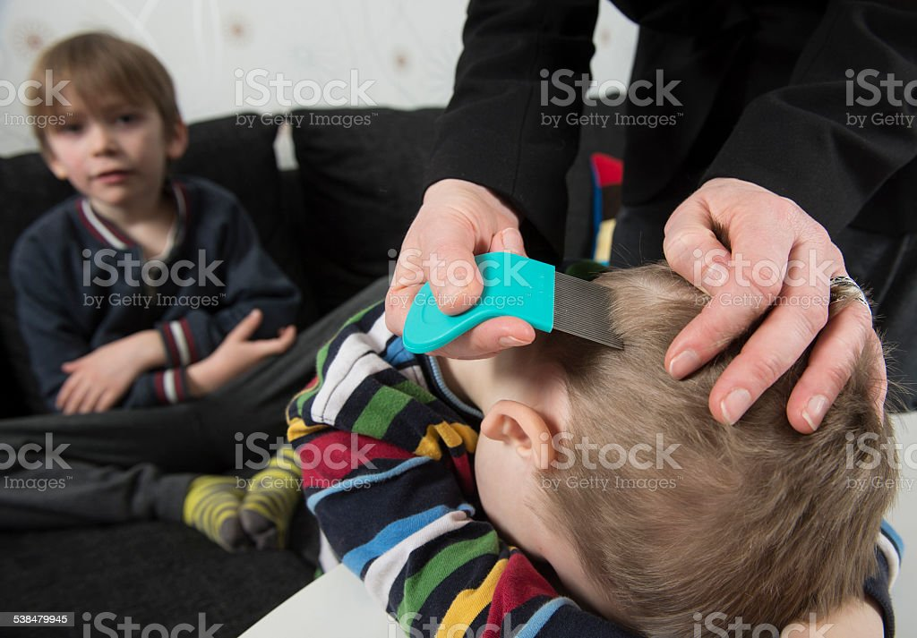 Youngsters getting head inspected for lice stock photo