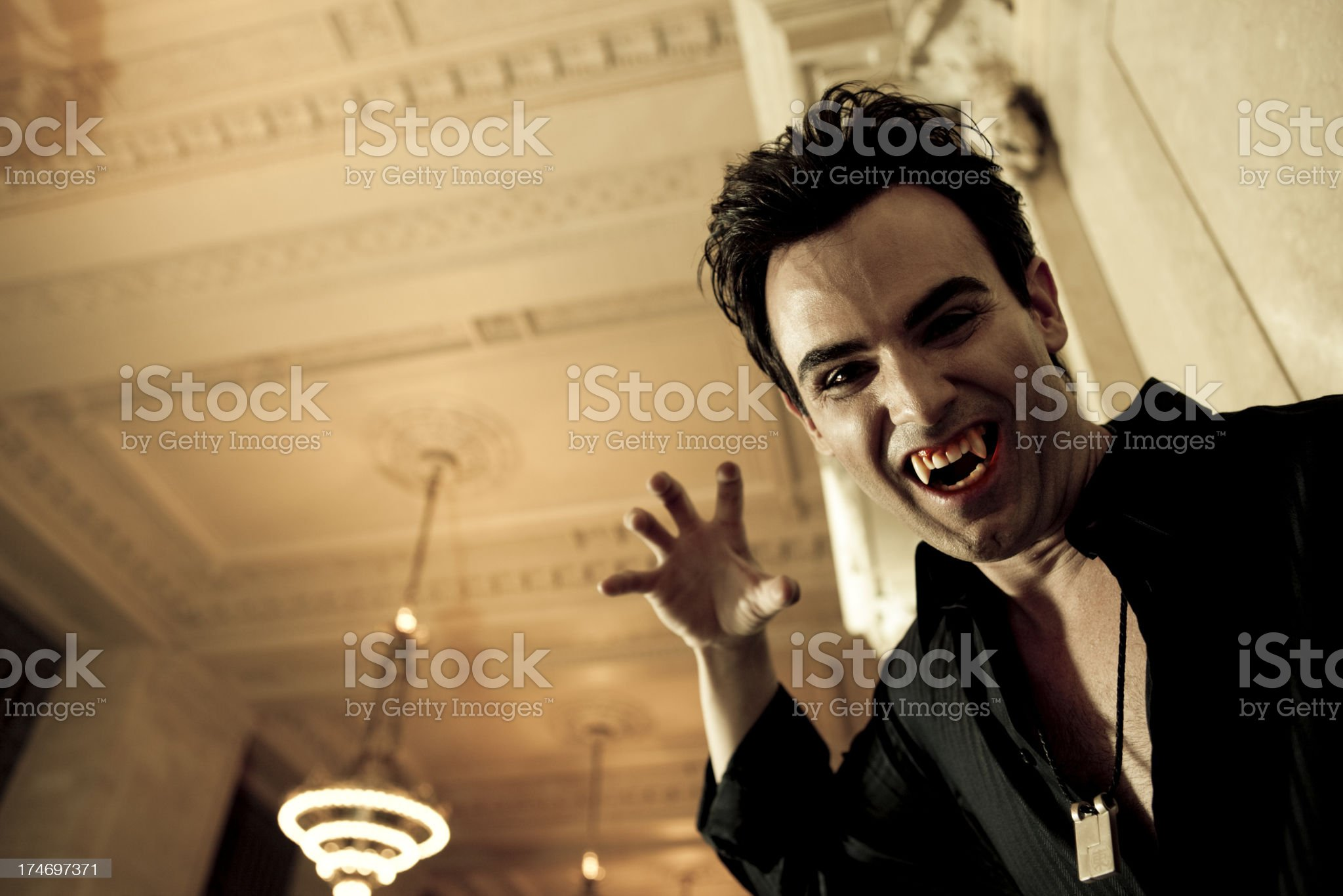 your next royalty-free stock photo