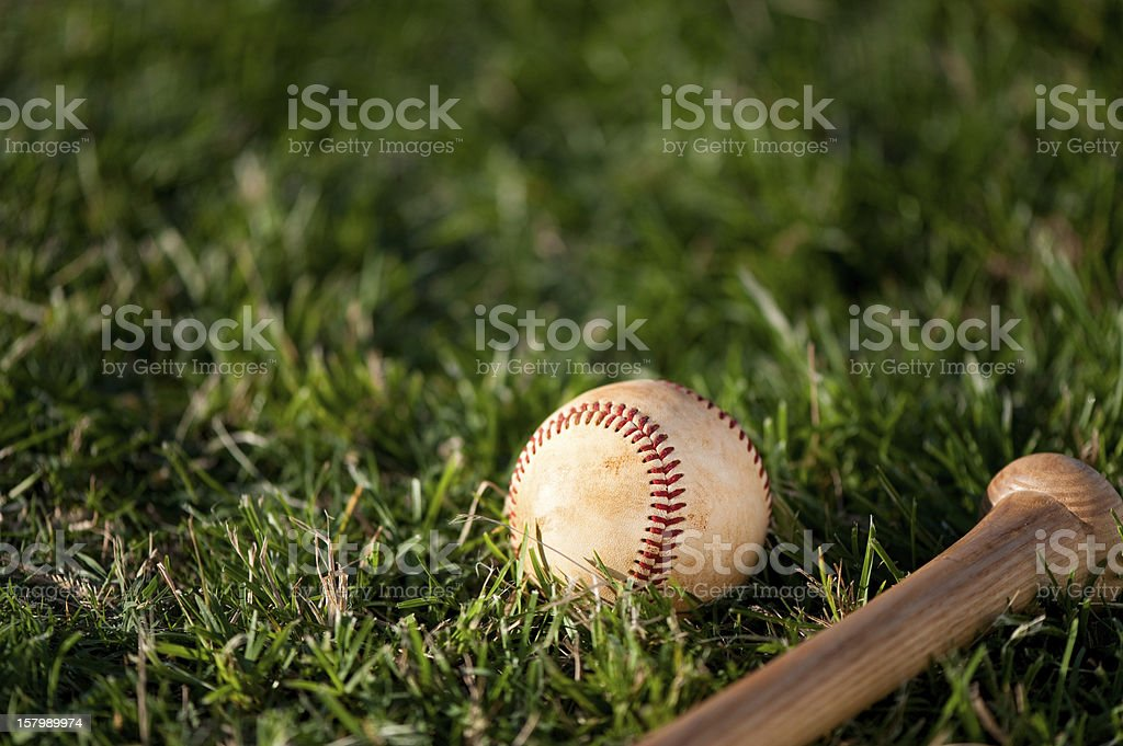 Youth League Baseball and Bat Close Up stock photo