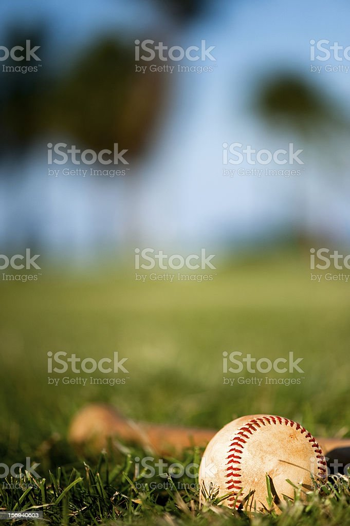 Youth League Baseball  Close Up stock photo