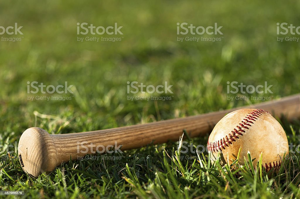 Youth League Baseball  Close Up royalty-free stock photo