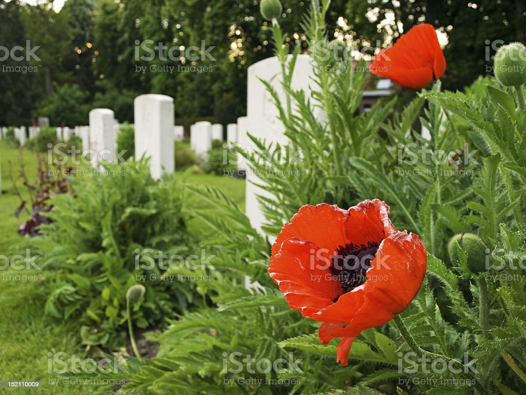 Ypres Reservoir Cemetery royalty-free stock photo
