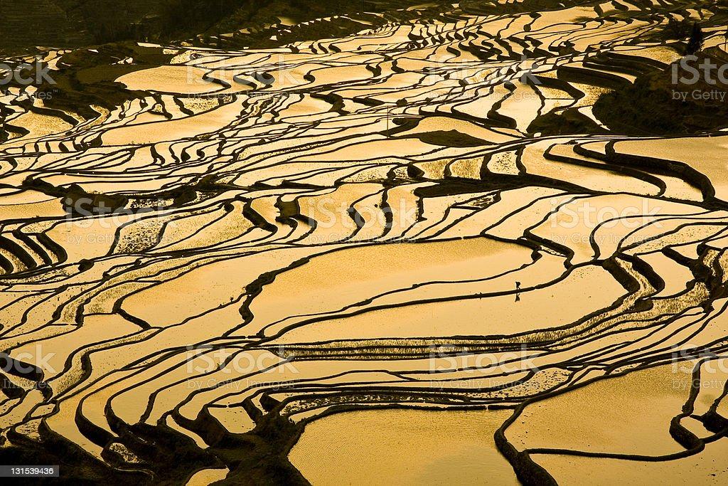 Yuanyang Terrace Duoyishu Sunset stock photo
