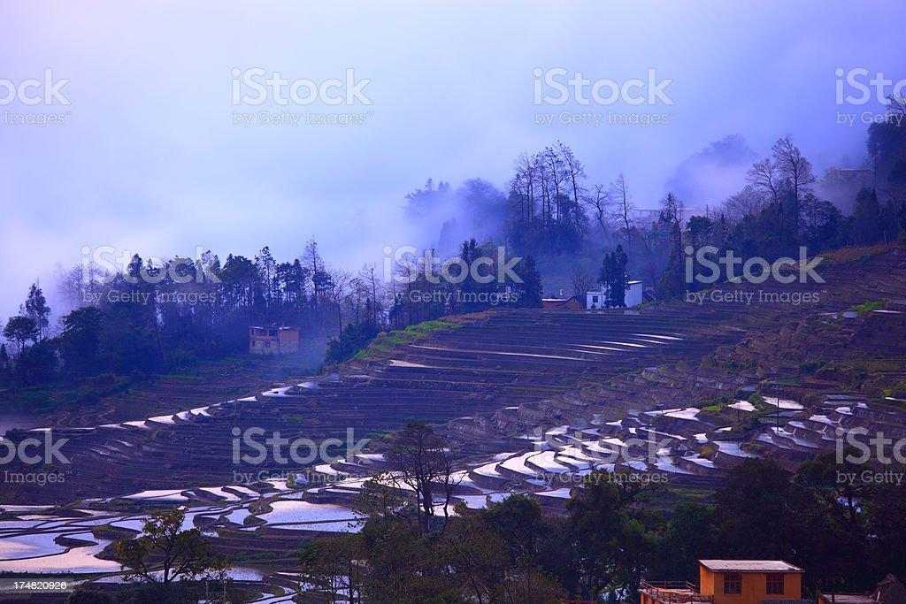 Yuanyang Terraced Fields stock photo