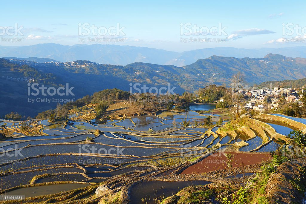 Yuanyang Terraced Fields royalty-free stock photo