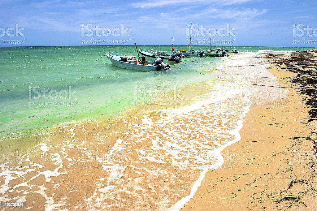 Yucatan Peninsula Beach stock photo