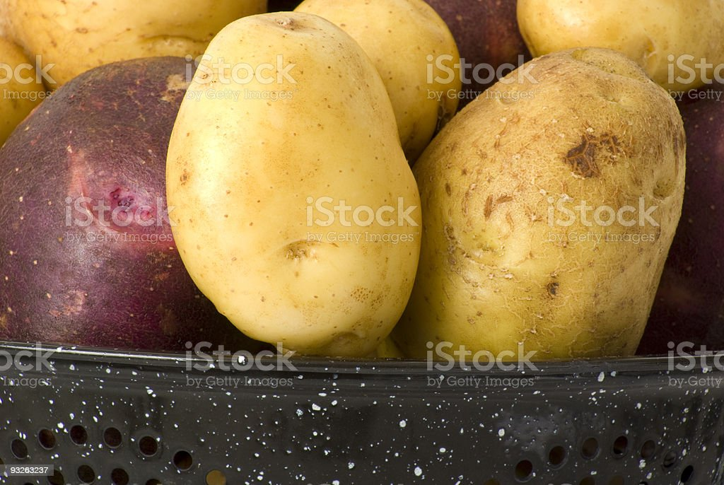 Yukon Gold and Blue potatoes stock photo