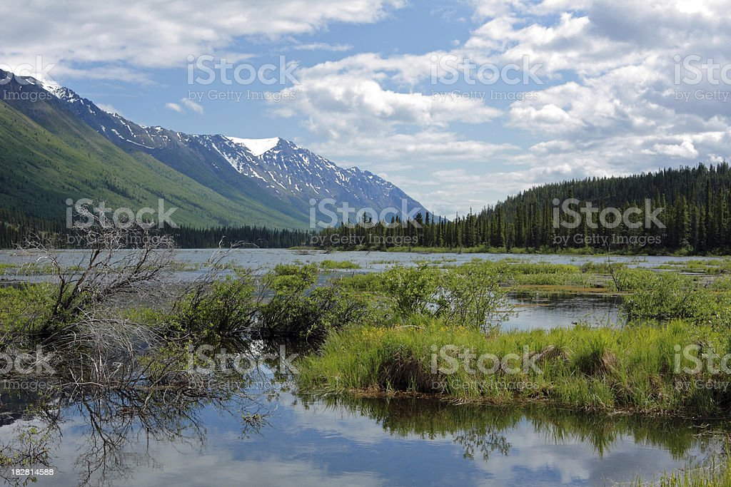 Yukon Landscape stock photo