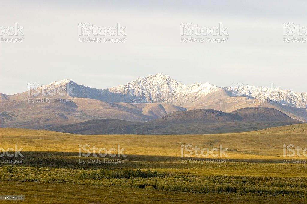 Yukon Wilderness royalty-free stock photo