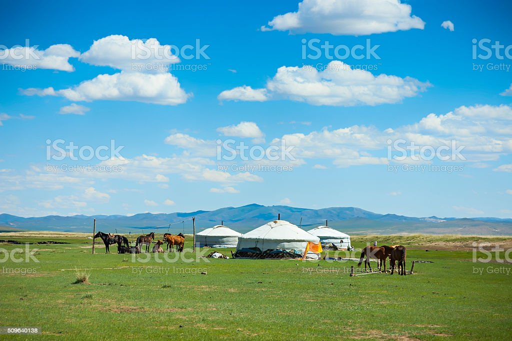 Yurts and horses in Mongolia stock photo