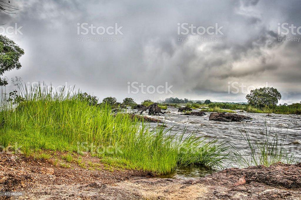 Zambezi River banks stock photo