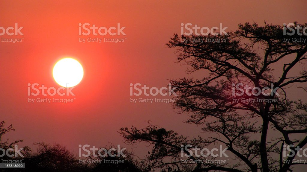 Zambian sunset stock photo