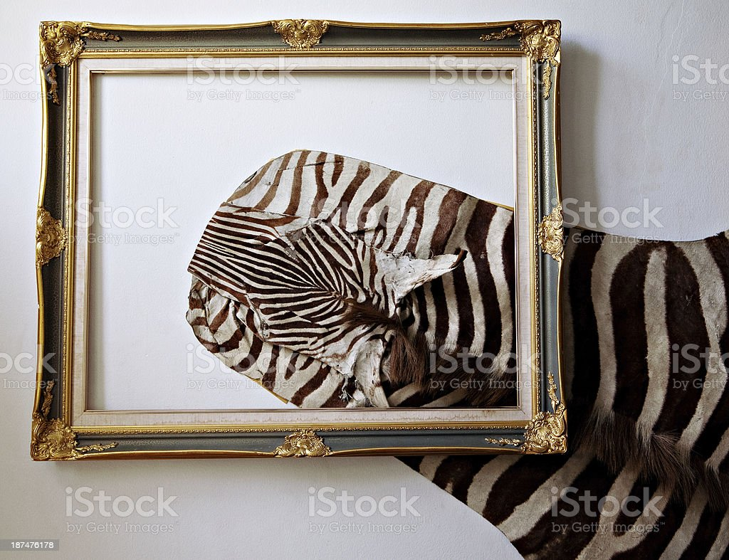 Zebra leather royalty-free stock photo