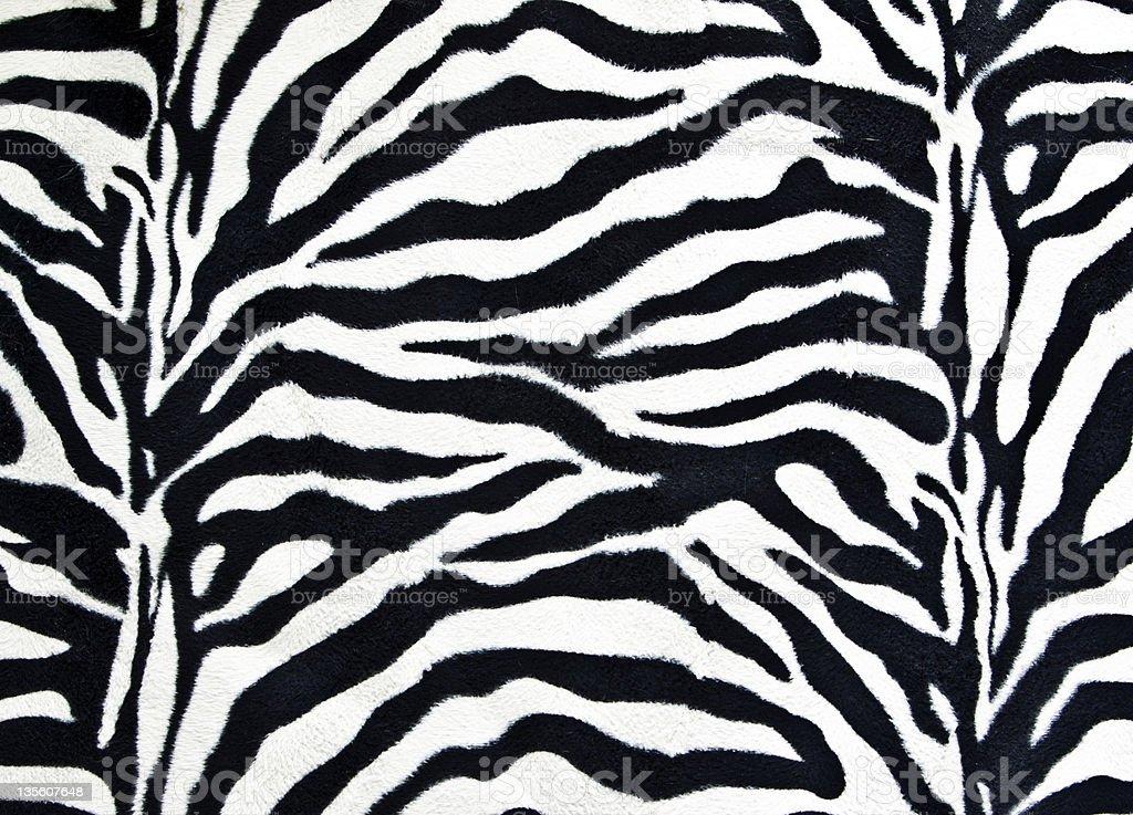 Zebra stripes detail stock photo