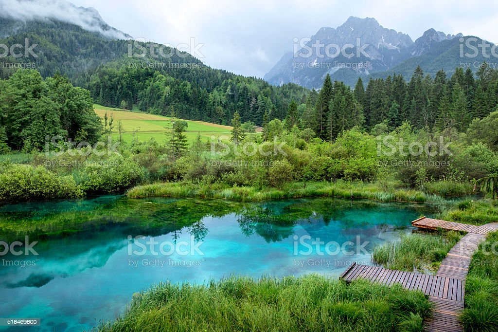 Zelenci pond near Kranjska Gora in Triglav National Park stock photo