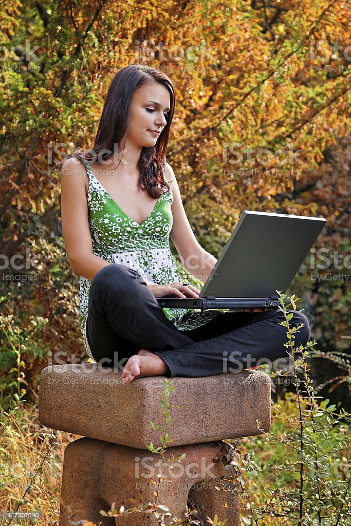 zen and computer royalty-free stock photo