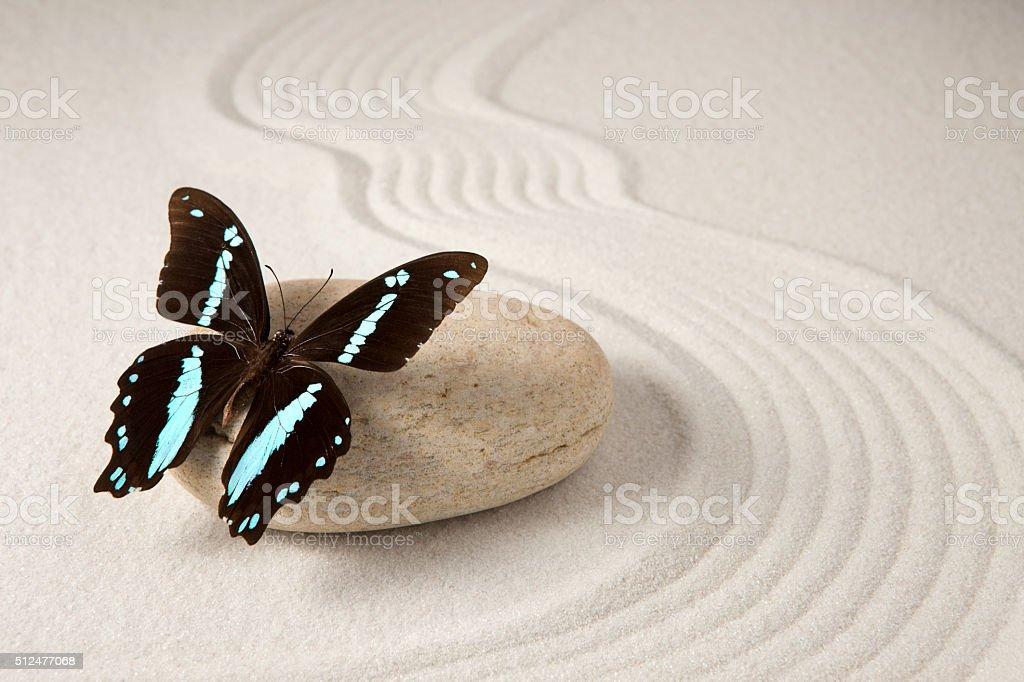 Zen butterfly stock photo