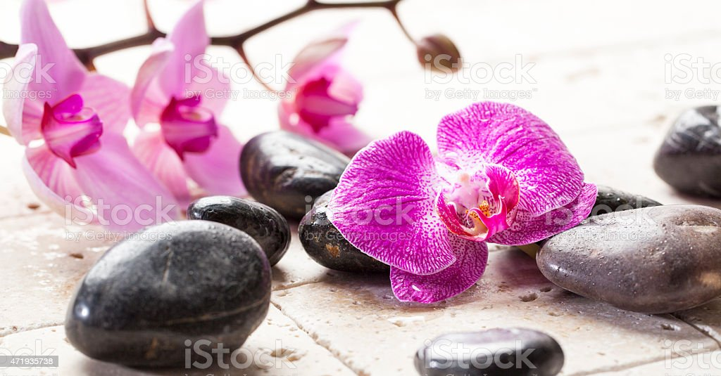 zen femininity with orchid flowers and massage stones stock photo