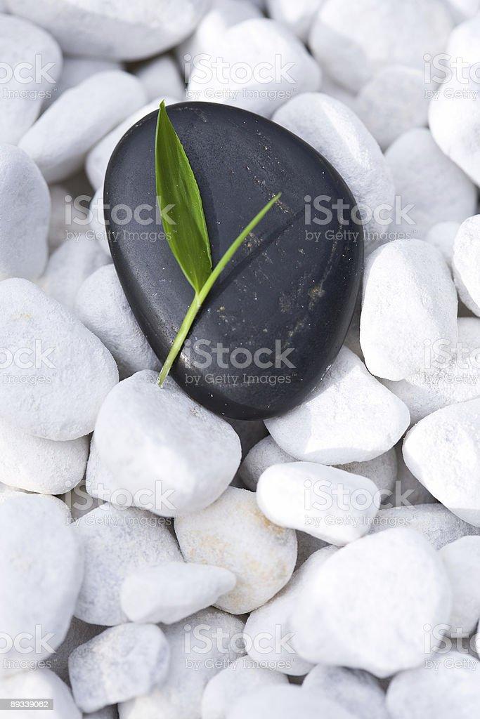 Zen royalty-free stock photo
