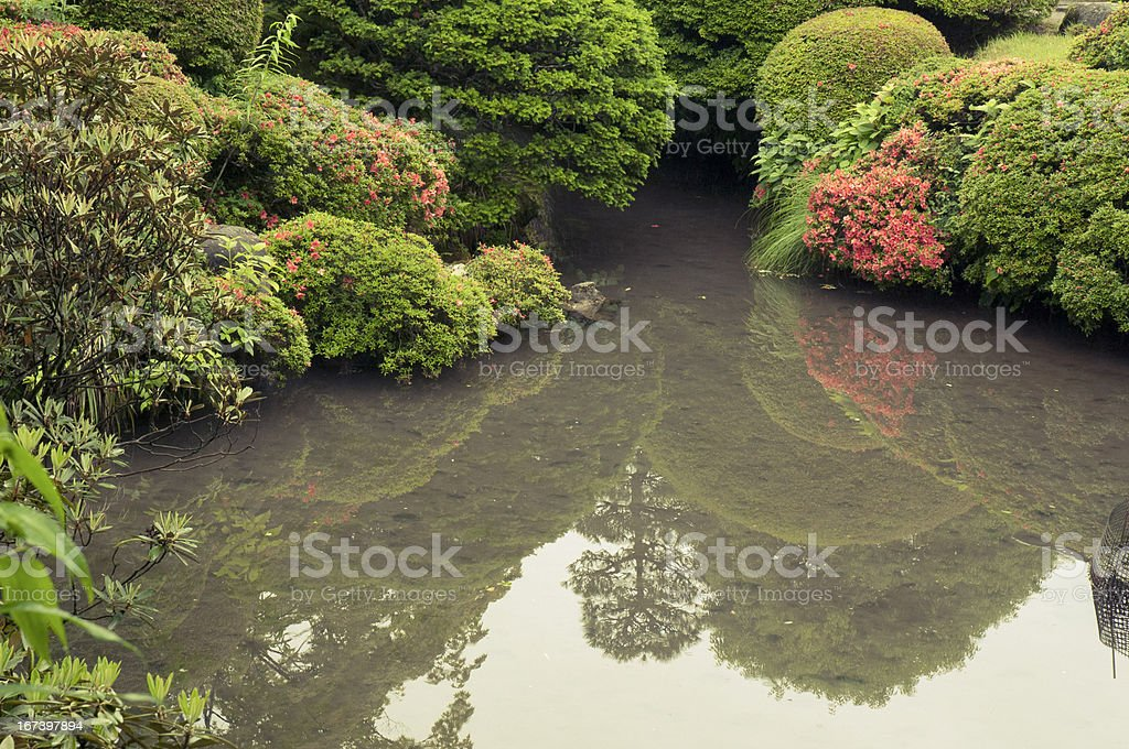zen pond by summer royalty-free stock photo
