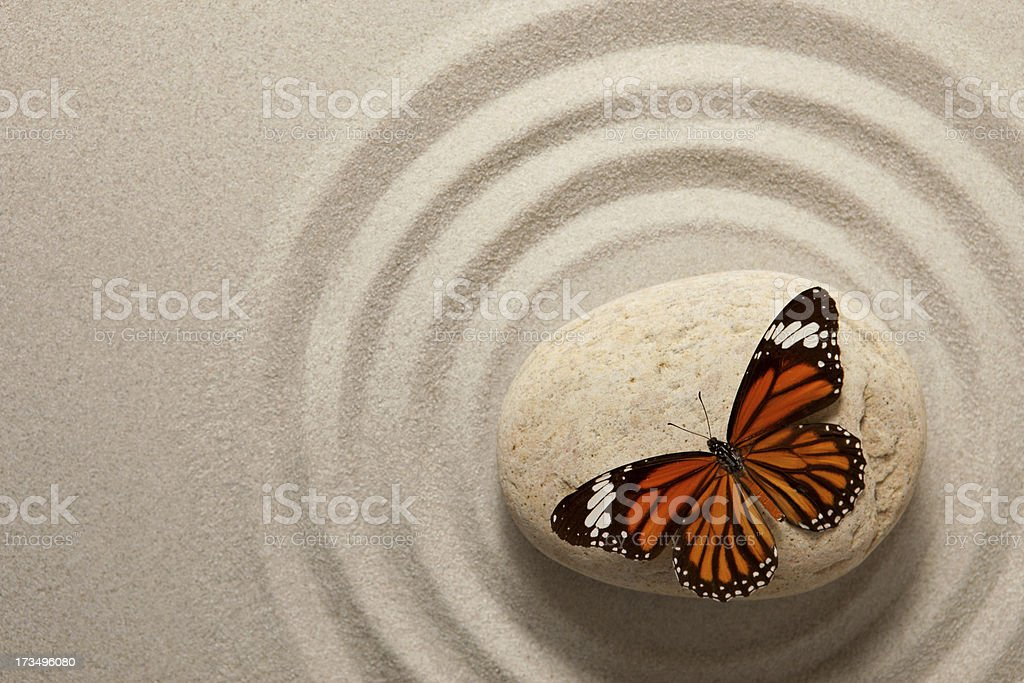 Zen rock with butterfly stock photo