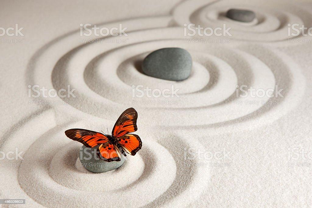 Zen rocks with butterfly stock photo