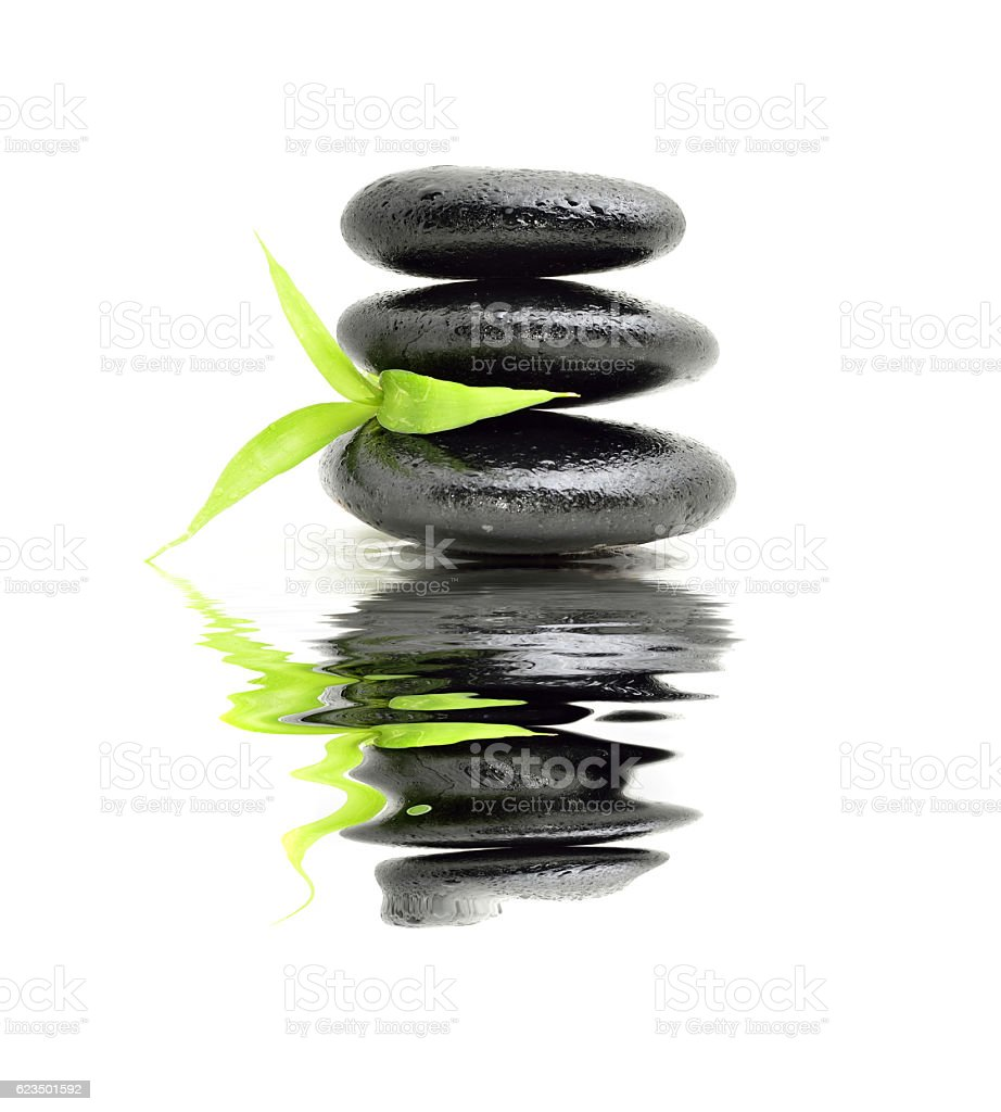 Zen stone with bamboo leaf on white background. Spa concept stock photo
