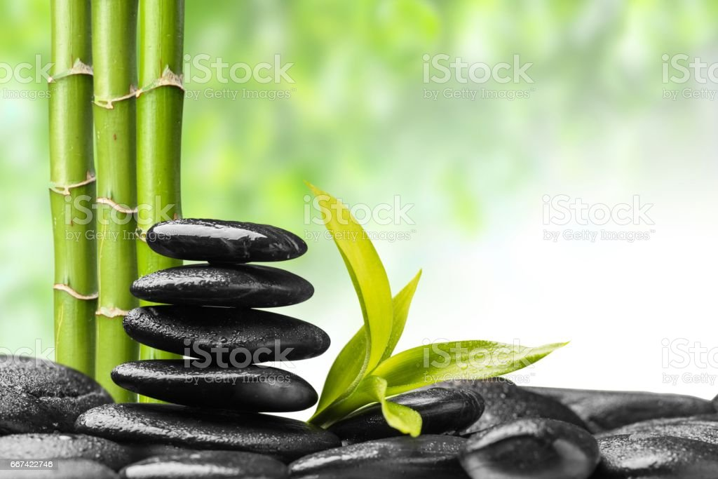 zen stones and bamboo on the white stock photo