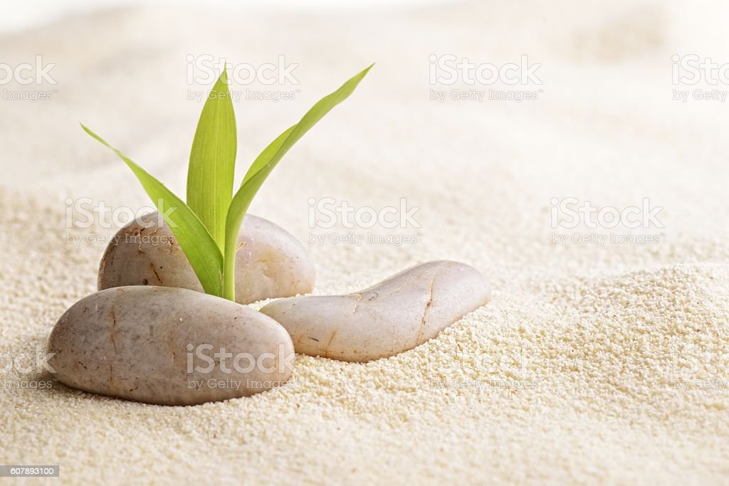 Zen-like stock photo