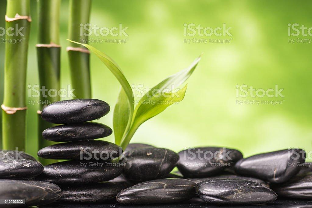 Zen-like stock photo